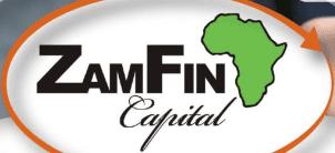Zamfin logo