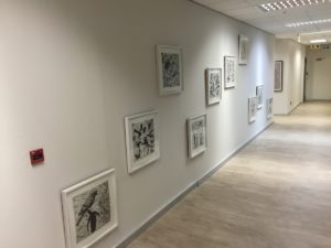 office space to rent in rivonia morningside - tbe ART